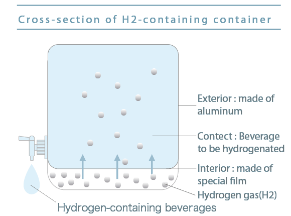 Cross-section of H2-containing container