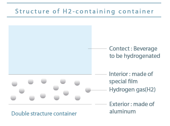 Structure of H2-containing container